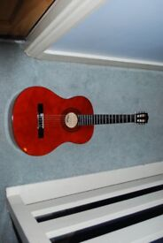 Brand New Acoustic Guitar and Suitcase