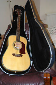 "Rare Washburn WD43-S Dreadnaught ""Birds Eye Maple"" Acoustic guitar"