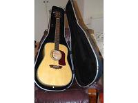 "Rare Washburn WD43-S Dreadnaught ""Birds Eye Maple"" Acoustic guitar"