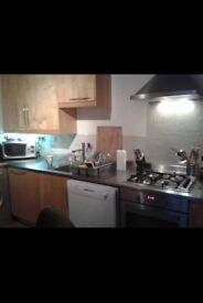 1 Bright Double Bedroom in Homey Little Venice