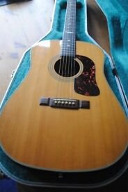 Washburn acoustic guitar with case