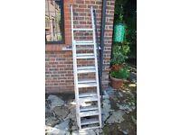 Loft Ladder Gravity-Randall metal and extending