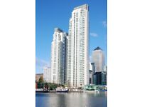 2 Bed Apartment In The Luxury Pan Peninsula Building