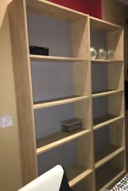 Storage unit/ large cupboard