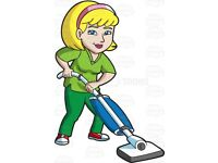 Do you need a cleaner? End of tenancy clean? Help with that big pile of ironing?