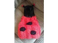 Ladybird Halloween Costume 9-12 months