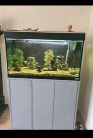 Fluval Roma 125 Litre Aquarium