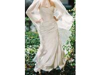 Pronovia Tigris wedding dress
