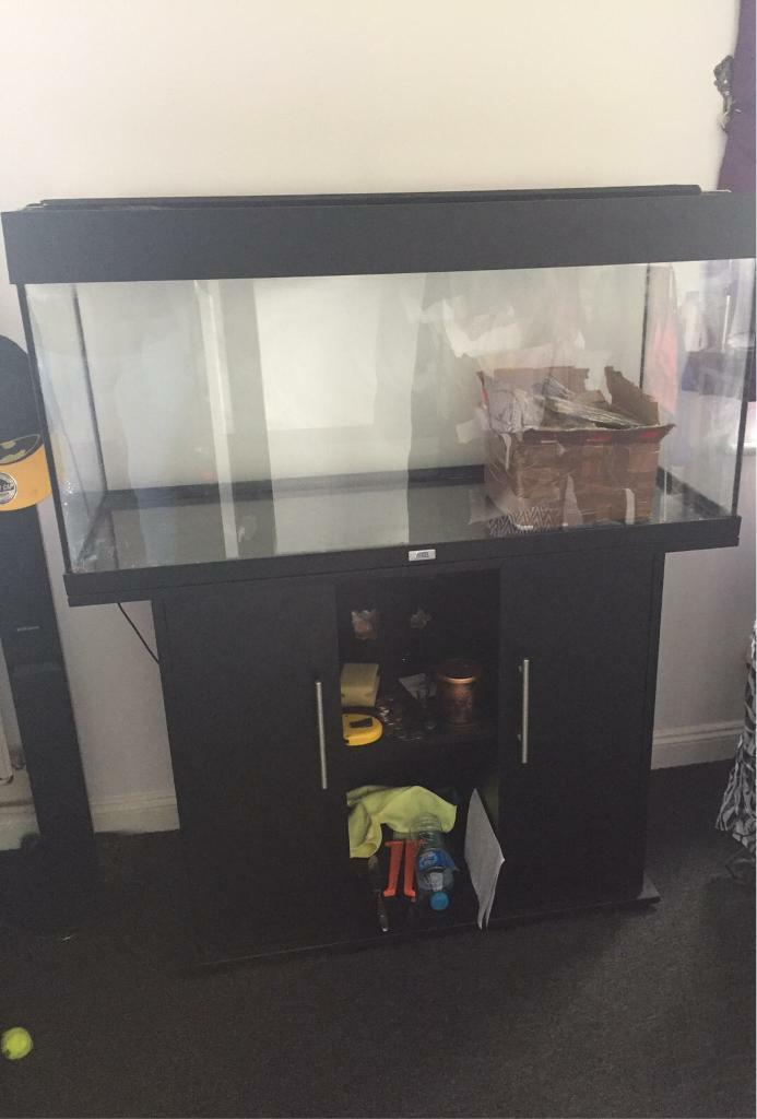 200L fluval tankin Basingstoke, HampshireGumtree - 200L black tank and unit lidless tank. Has a large white/blue led light nice and bright. All perfect condition just unit has some holes in the back made for wires to go through but does not effect use