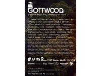 Gottwood Festival weekend ticket (8th June - 11th June) £110 ONO