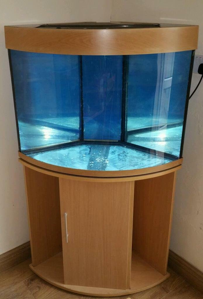 Aqua one eurostyle 85 150 litre corner fish tank in for Corner fish tank for sale