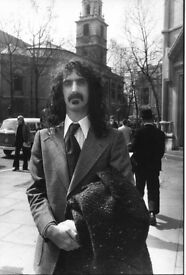 Musicians wanted to play Zappa