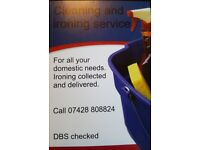 Domestic cleaning and ironing service.