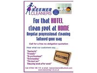 Regular Professional Home Cleaning