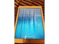 iPad Air 2 64GB (Gold)