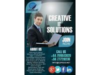 Website Designing and Development, Software Solutions