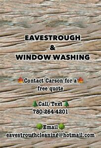EAVESTROUGH CLEANING & WINDOW WASHING (free online quote)