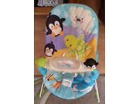 F&P baby bouncer