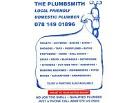 LOCAL FRIENDLY PLUMBER
