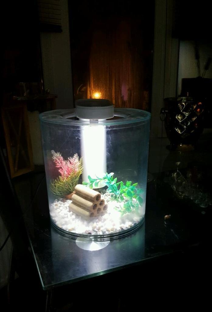 marina 360 aquarium 10l fish tank in blackpool lancashire gumtree. Black Bedroom Furniture Sets. Home Design Ideas