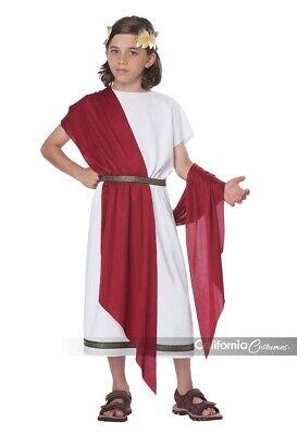 California Costumes Basic Toga Greek Roman Classic Child Halloween Costume 00622