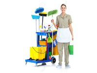 domestic cleaning services and ironing