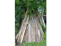 LARGE JOB-LOT OF WOOD/TIMBER FROM GARDEN CLEARANCE. POSTS, TELEGRAPH POLES, PLANKS etc