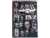 Punisher #29