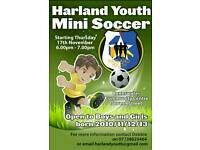 Harland Youth Mini Soccer