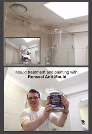 Specialist interior painter decorator KITCHEN CABINETS SPRAY PAINTING specialist in MOULD Treatment