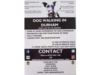 Dog Walking In Durham - Dog walking and other pet services in the Durham area - Fully Insured