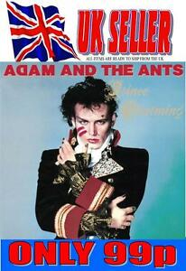 ADAM AND THE ANTS - CD - 10 SONGS *NEW*