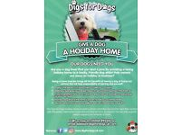 Dog loving families/dog home boarders/dog sitters wanted to look after dogs for holidays