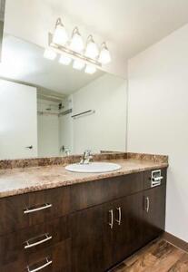 FREE RENT - Windsor Park Plaza - Bachelor Apartment for Rent Edmonton Edmonton Area image 18