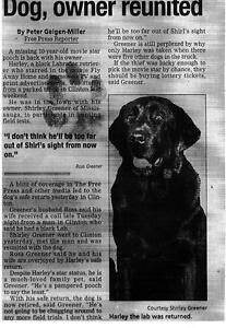 2 Paw Autog. Of Harley A TV & Movie Star Was Stolllen&Returned London Ontario image 2