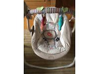 Bright Starts Cosy Kingdom baby swing chair