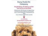 Dog walking Pet Sitting Pet Taxi Services