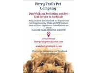 Dog Walker, Pet sitting, Pet Transport- 10 Years Experience, Canine First Aid Trained- GPS tracked