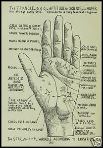 13-OLD-BOOKS-PALMISTRY-CD-HAND-CHEIROMANCY-FORTUNE-TELLING-ANTIQUE-COLLECTION