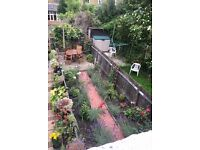 Two rooms for rent in lovely flat in Earlsfield