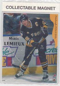 Cartes de hockey Aimantées 1996 (H100-101-103))