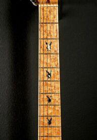 Fender masterbuilt custom shop playboy prototype