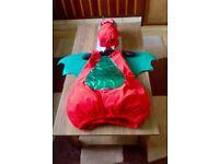 Welsh Dragon Child's Fancy Dress Costume age 5-6 Excellent Condition