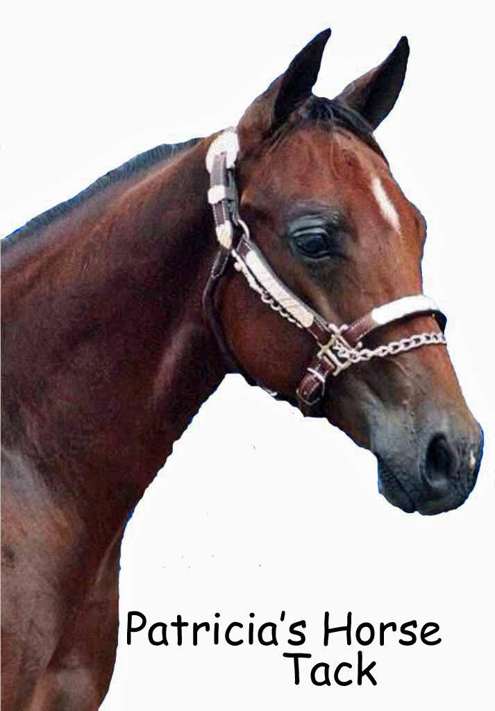 Patricias Horse Tack