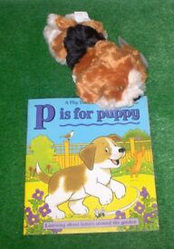 Book with Lovely Soft Toy Puppy Story Prop £5