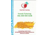Experienced French Tutor North Down/Ards: KS1, KS2, KS3 & GCSE