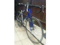 Apollo TDF02 54cm Road / Triathlon Racing Bike