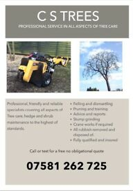 Professional Tree cutting felling pruning carried out in West Midlands