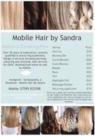 Mobile Hairdresser Basildon