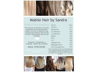 Mobile Hairdresser Basildon